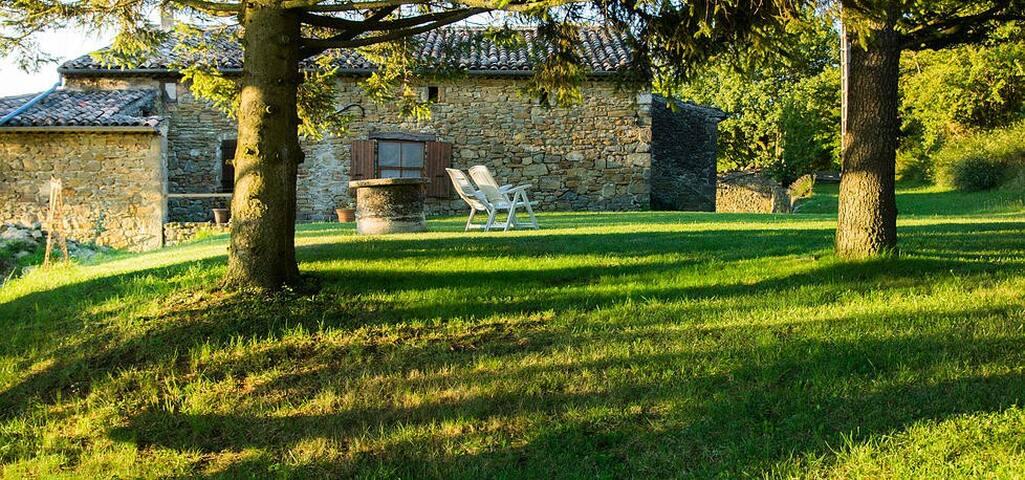 Weekend en Provence / Cinema Room - Comps  - Bed & Breakfast