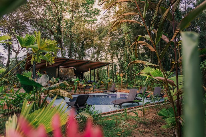 Sustainable & eco friendly domes in the the jungle