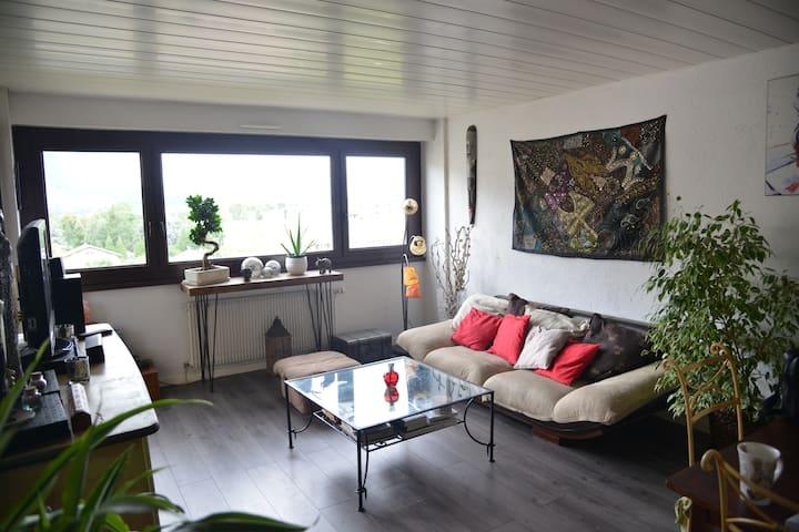 Bel appartement de 3 pièces aux portes de Genève - Gaillard - Apartament
