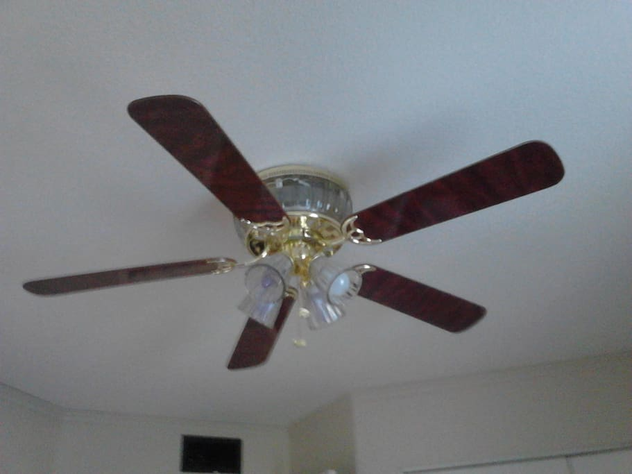 Gotta have Ceiling fans in Arizona. One above your bed.