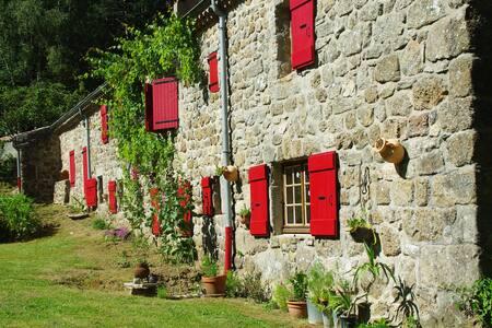 Ferme en pierres de pays au milieu des bois - Saint-Barthélémy-Grozon - Maison
