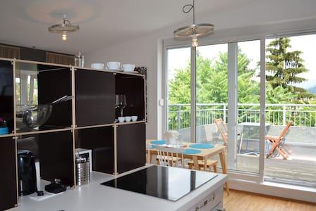 Apartment Dachterrasse Graz Lend - Graz