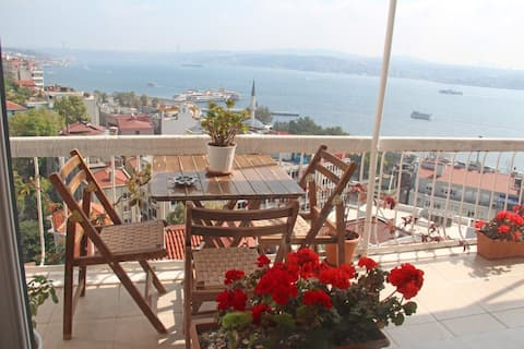 Room in shared duplex in Istanbul center (seaview)