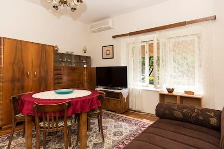 Vintage Parkview Apartment - Belgrade