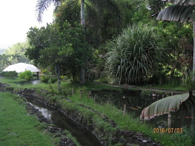 Riverside pond