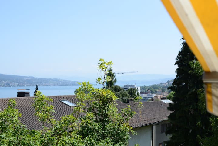 Large room with stunning lake view! - Zürich - Bed & Breakfast