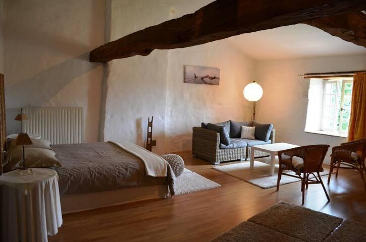 Suite 2 à 4 personnes dans Manoir - Sainte-Gemme - Bed & Breakfast