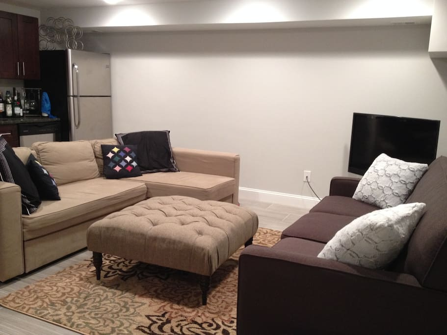 Mini-apartment main room & kitchenette (full size trundle bed sleeps 2; couch sleeps 1)