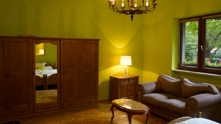 Large, charming private room - Kraków - House