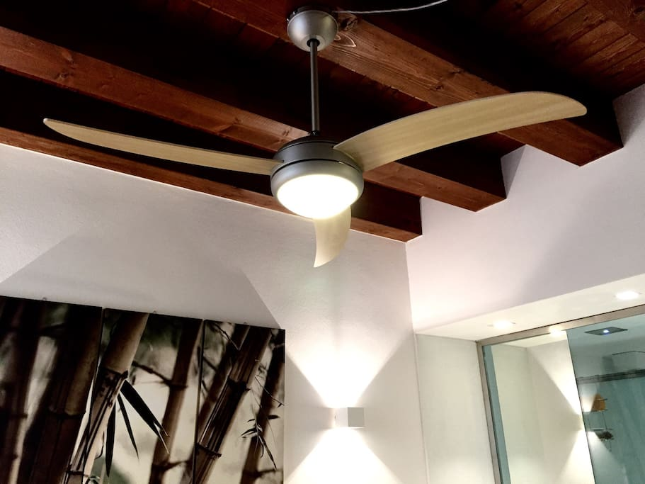 Ceiling fan with light - remote control.