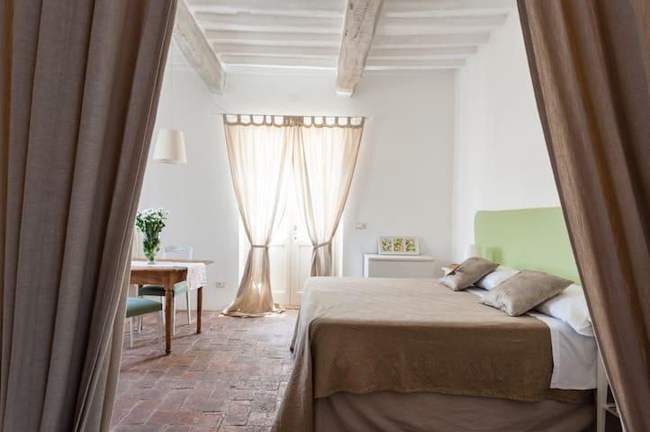 B&B Naturae charming room near Pisa - Cascina - House