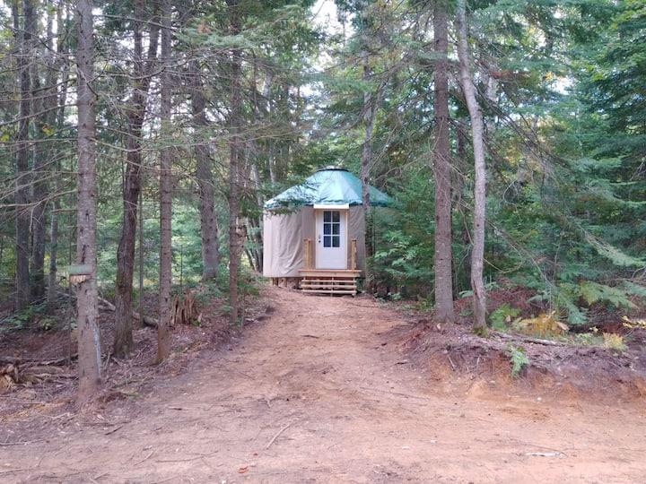 Great Lakes Yurt Camp: Brook Trout Yurt