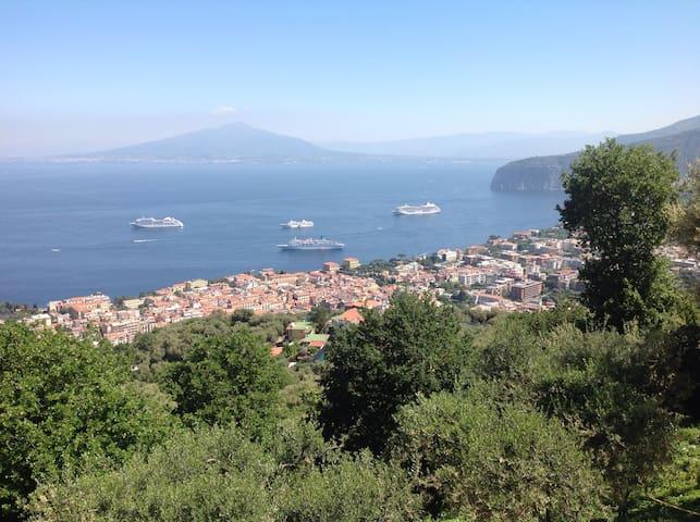 Villa li schisani - Sorrento - Loft