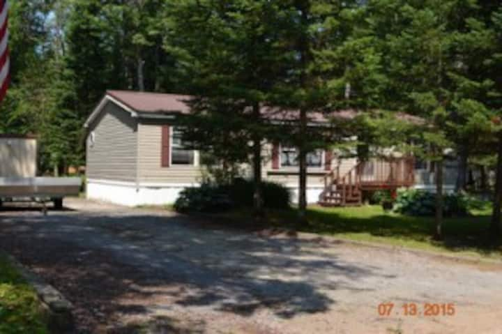 Elmwood Pines Modern Country Camp