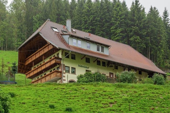 Luxurious Farmhouse near Forest in Mühlenbach