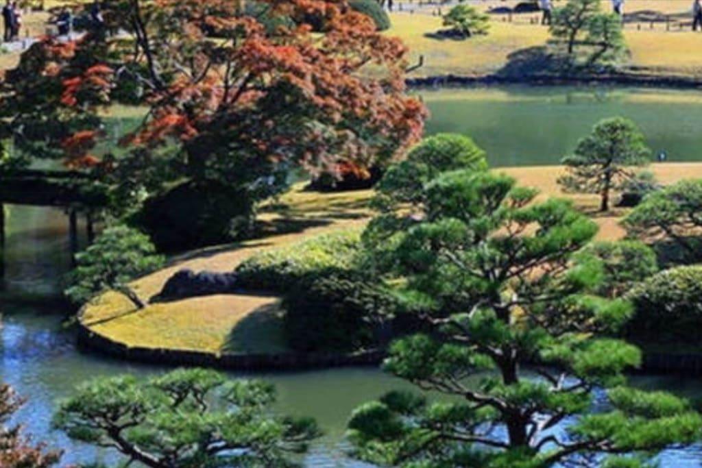 Adjacent to 2 of Tokyo-9-Famous-Courtyard --Rikugien & Old Furukawa 臨近東京都立9庭園中的2個 - 六義園 &舊古河庭園