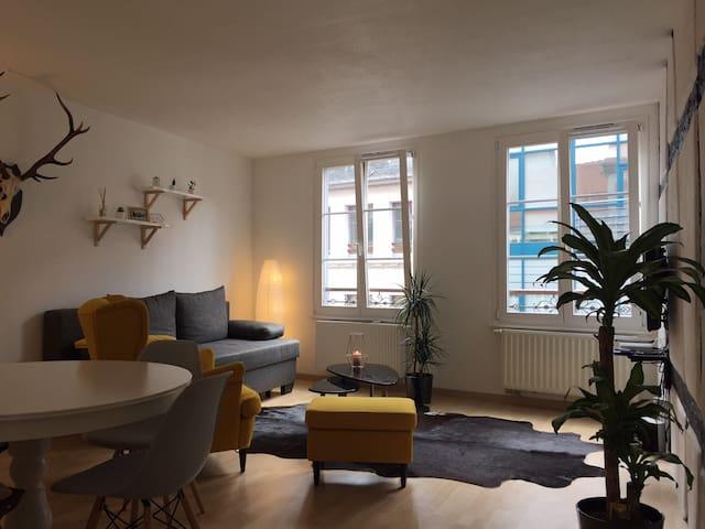 Nid douillet au coeur du centre historique - Colmar - Appartement