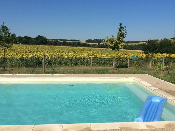 Maison en pierre avec piscine à Lectoure