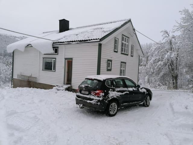 Livegen 1 - koselig hus til leie i Bykle