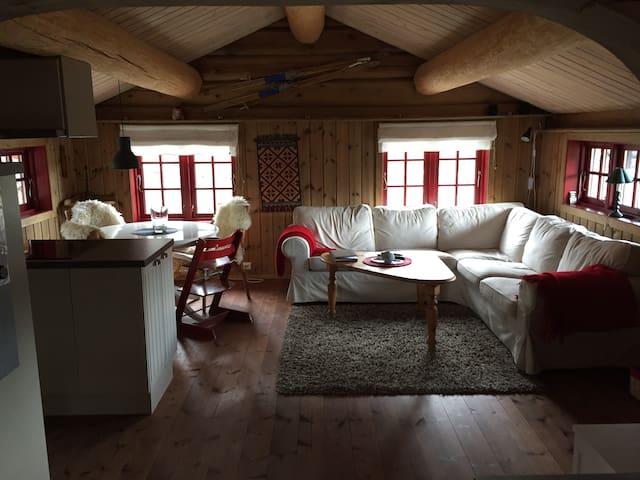 Holiday cabin, Kristianplass at Bjorli, Lesja
