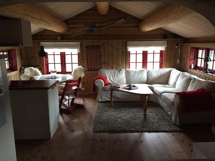 Nice mountain cabin Bjorli, Lesja