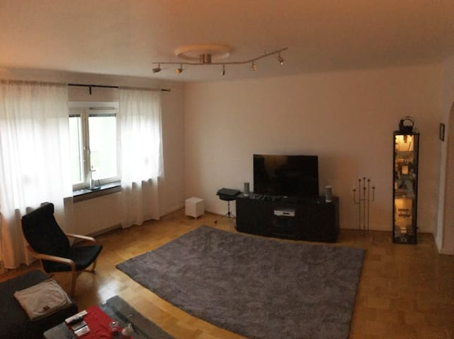 67m2 Apartment in central Malmö - Malmö - Huoneisto