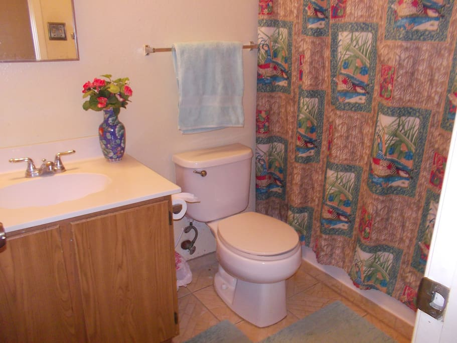 Your shared bathroom. Locks from inside. Tub, shower, towels, shampoo, TP,  provided for tourists.