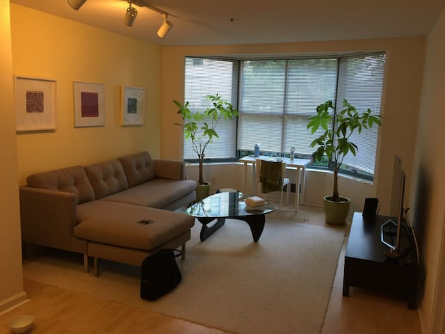 SuperBowl stay in the city ! - San Francisco - Apartment