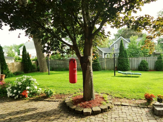 Very large backyard and patio space, Sports Equipment