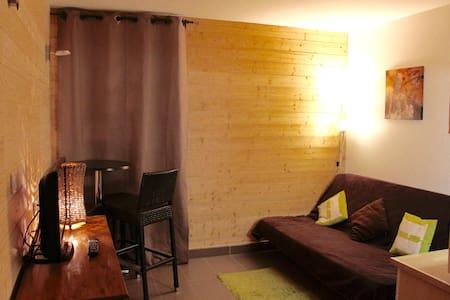 Joli studio aux pieds des pistes et de la galerie - Isola - Apartemen