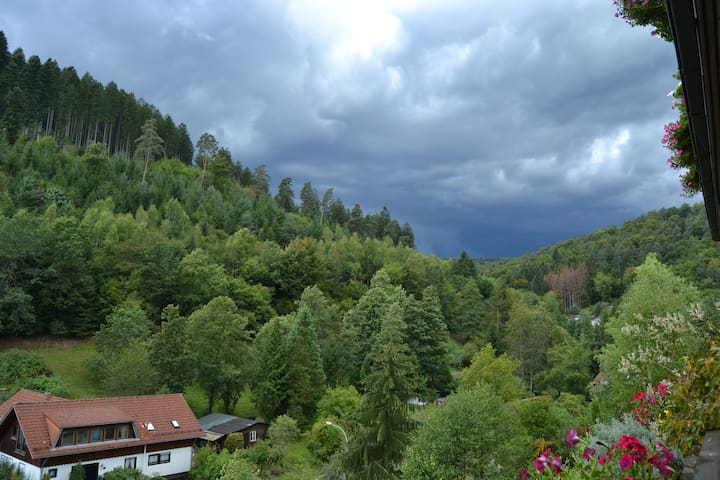 Schöne Ferienwohnung in der Nähe von Heidelberg - Schönau - Osakehuoneisto