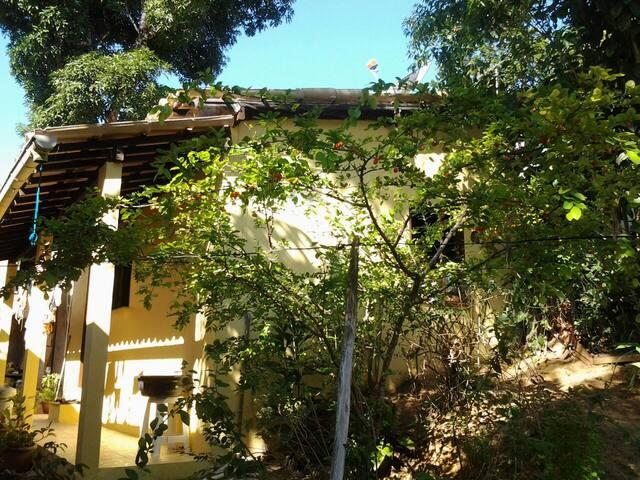 Casa geco