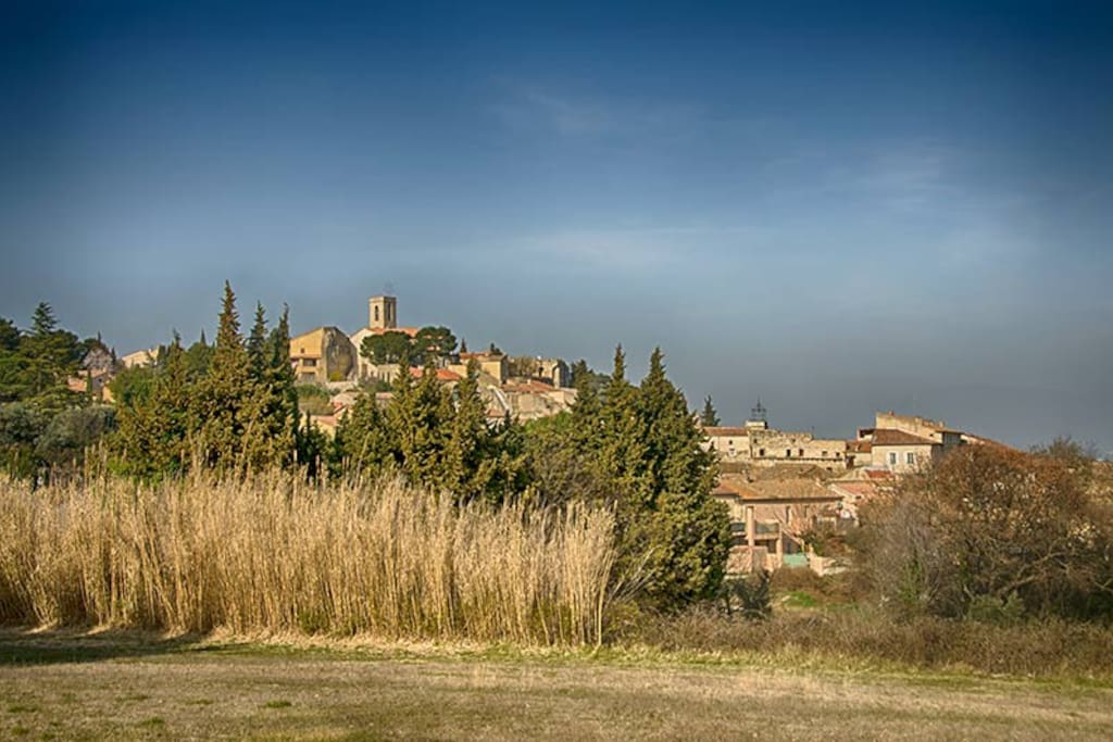The village of Chateauneuf de Gadagne