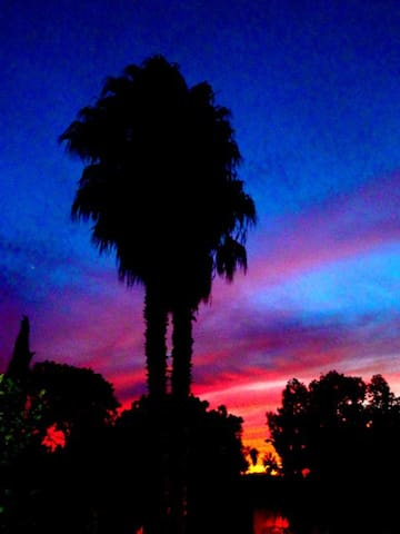 Charming La Jolla Hideaway! - San Diego - Haus
