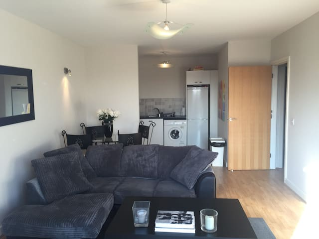 Large Apartment Great Location! - Dublin - Apartment