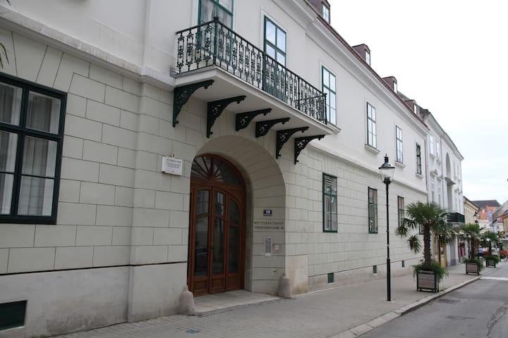 Ferienwohnung Theresia - Baden - Wohnung