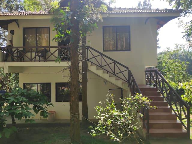 M5-Cottages Amidst Mudumalai Forest(3 Meals Incl.)