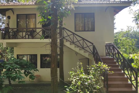 M5-Cottages Amidst Mudumalai Forest(3 Meals Incl.)