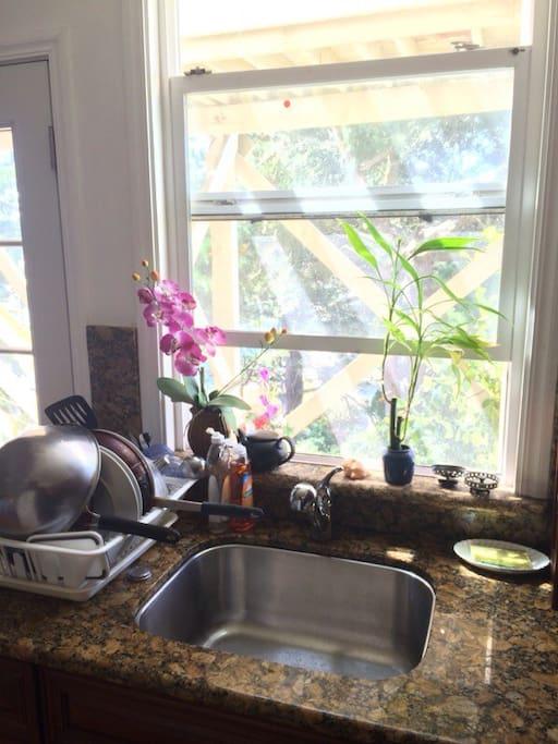 Kitchen sink overlooks backyard