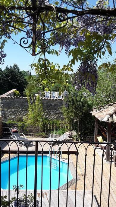 le jardin de la piscine vu de la terrasse