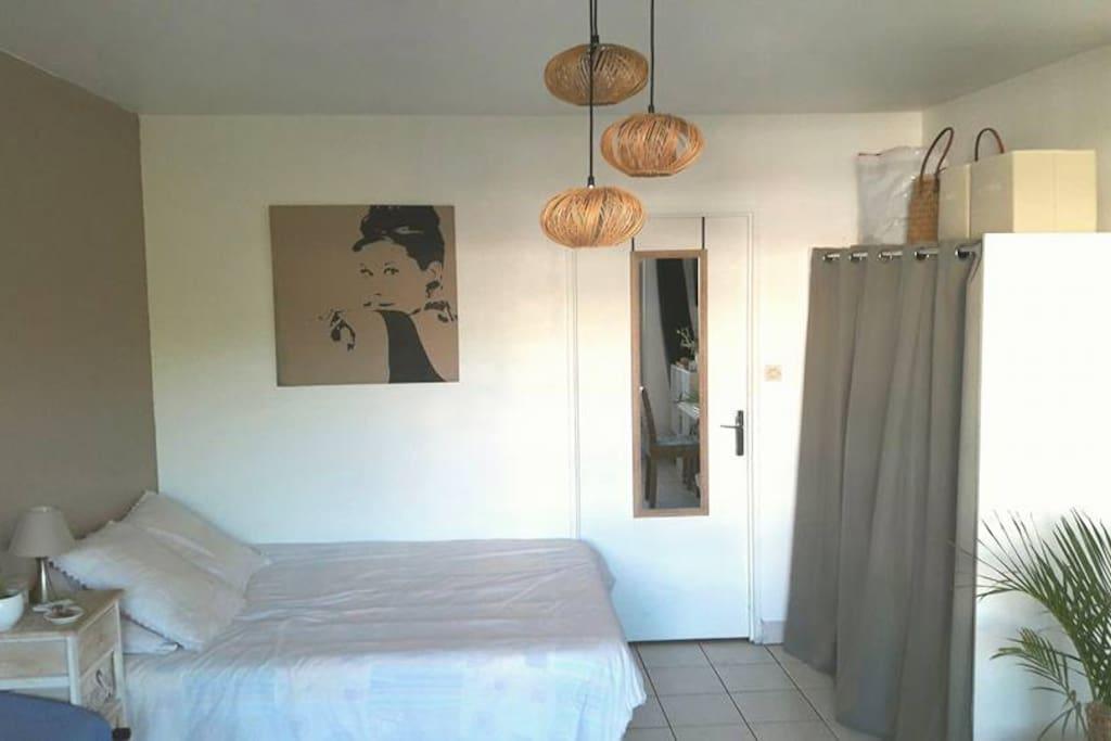 L'espace vie composé d'un lit en 140, un dressing et le coin salon, séparé de la cuisine