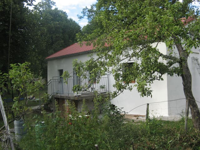 The Little Honey House - Klenovica - House