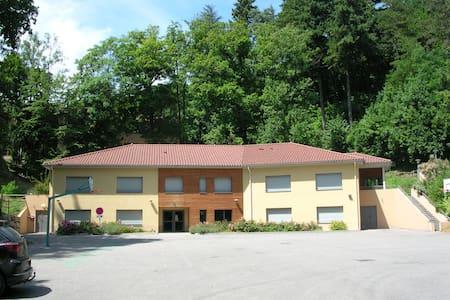 gite de groupe, 20 chambres , capacité  75 places - Saint-Sorlin-en-Bugey