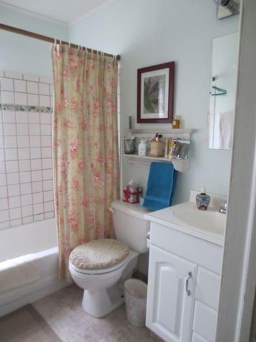 bathroom - 1 sink, tub/shower