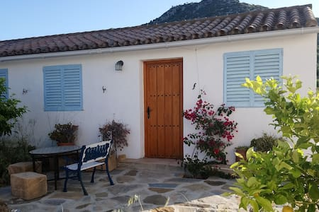 Andalusian country cottage.
