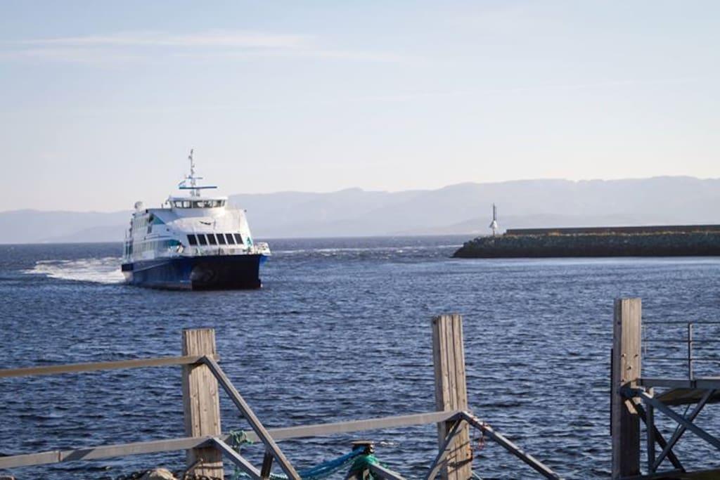 Hurtigbåt rett ved Hybel