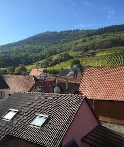 2 pièces sur la route des vins - Châtenois