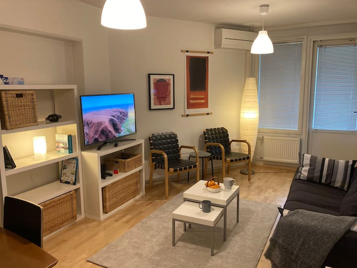 Spacious 2-bedroom apt next to the train station