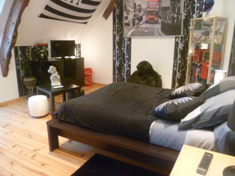Chambre lit 140x190, télévision