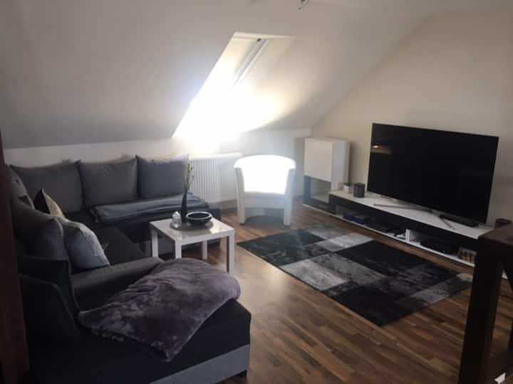 Modernes Loft ( 65 m² ) mit Luxus-Bad, Stadtmitte